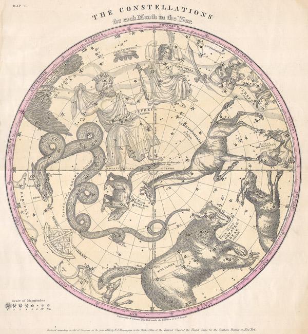 Constellationsburritt-1856